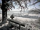 Winterspaziergang Febr._10