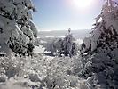 Winterspaziergang Febr._12