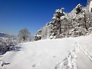 Winterspaziergang Febr._13