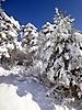 Winterspaziergang Febr._14