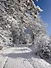 Winterspaziergang Febr._1