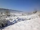 Winterspaziergang Febr._3