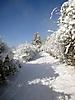 Winterspaziergang Febr._4