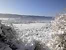 Winterspaziergang Febr._5