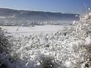 Winterspaziergang Febr._6