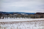 Winter Jan. 21_1